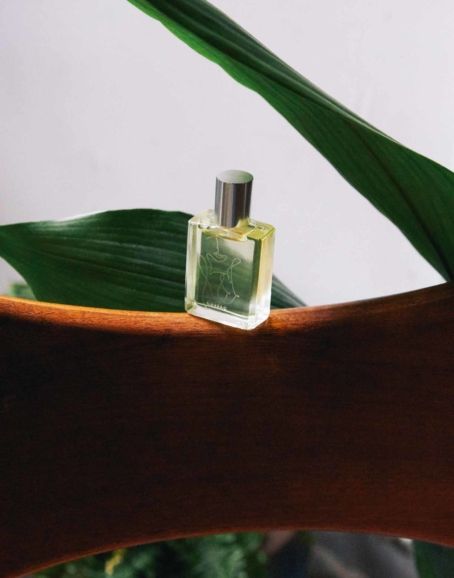 Cossac - 'In Slow Bloom' Perfume