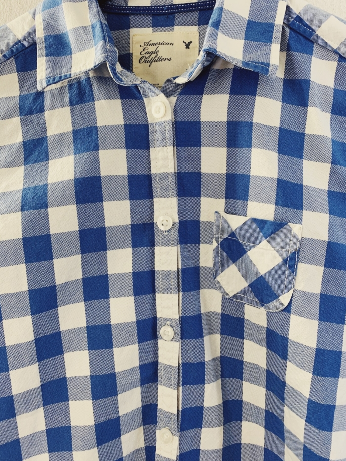 Ecosphere Vintage - Womens Blue Checkered Blouse